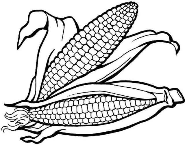 Dibujos de cereales para colorear - Imagui