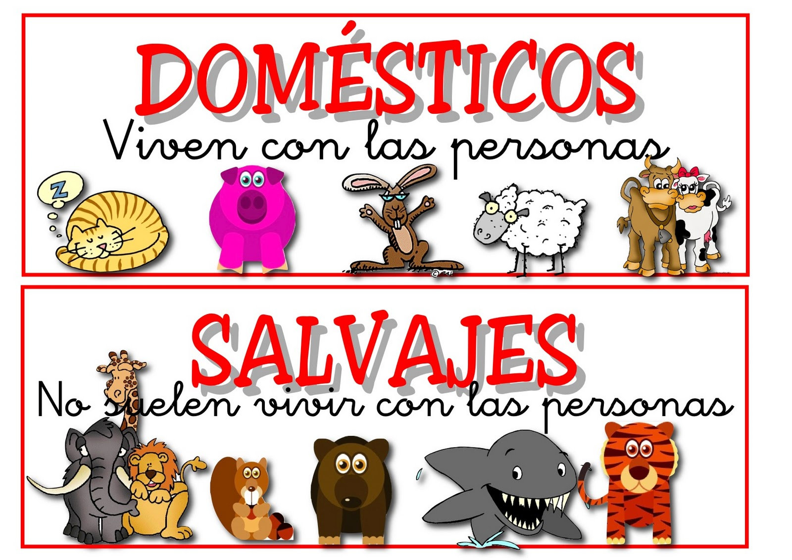Los Animales - Lessons - Tes Teach