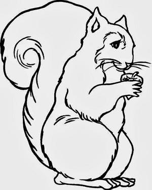 Dibujos De Animales Salvajes Y Domesticos Imagui