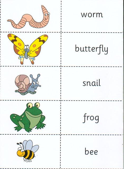 Vocabulario En Inglés Para Niños
