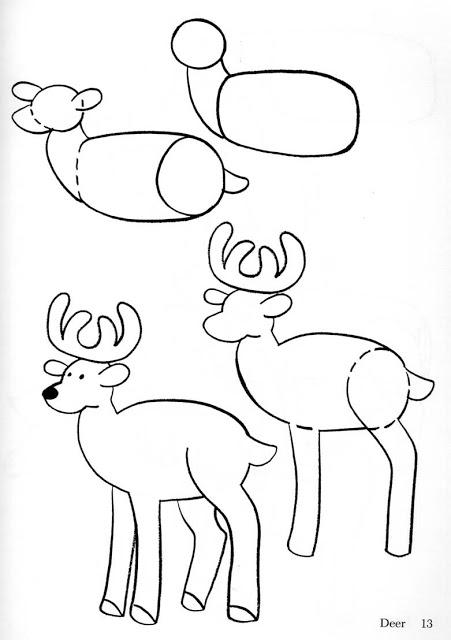 Aprender a dibujar un ciervo paso a paso para escolares