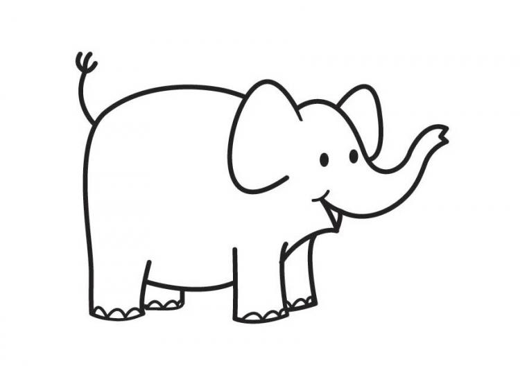 Colorear dibujo elefante - para preescolar - CUCALUNA